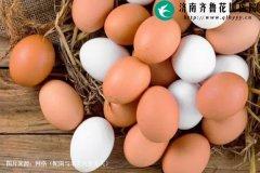 鸡蛋红壳的要比白壳的更有营养吗